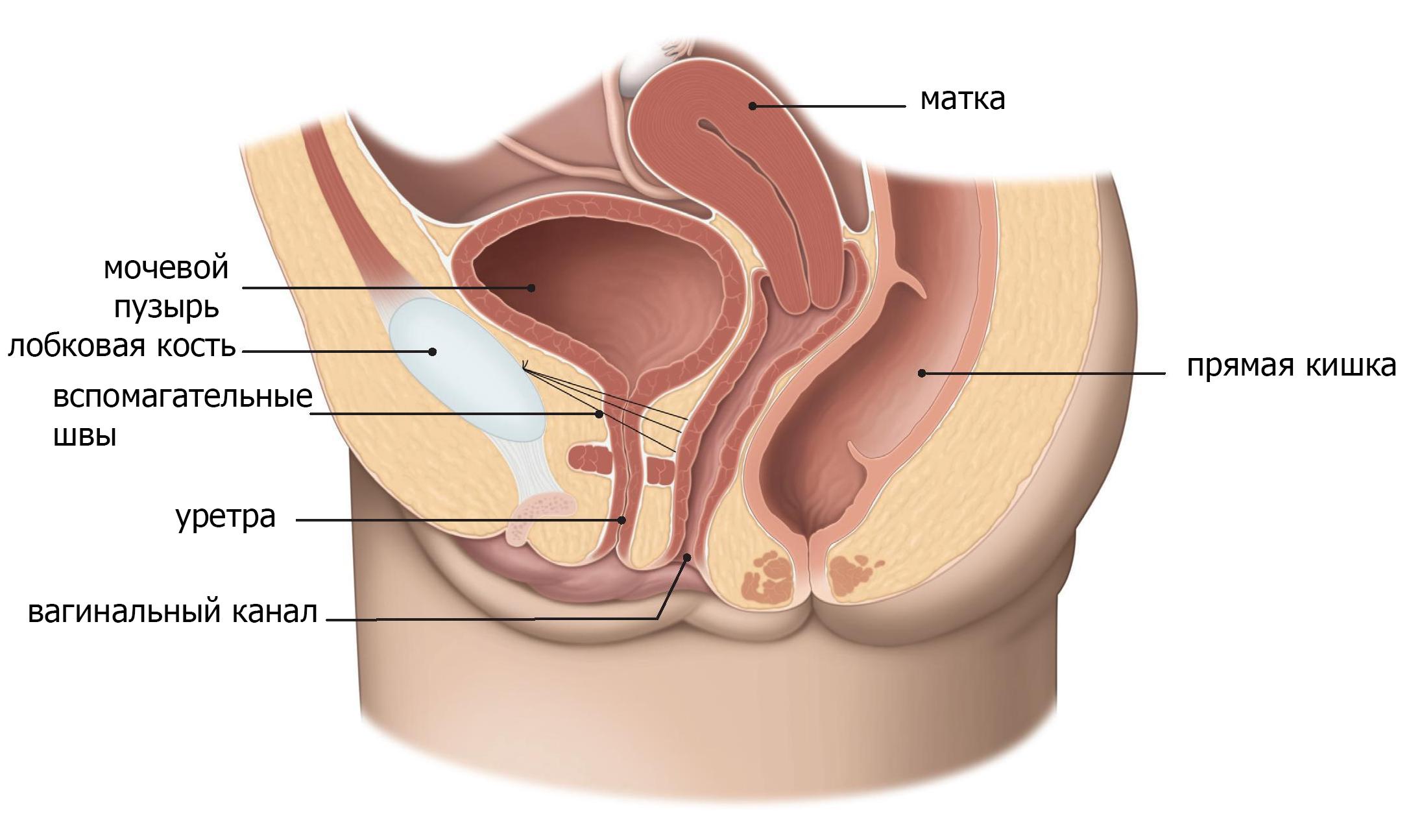 вакансии вылечить лейкоплакию мочевого пузыря отзывы низ